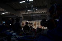 esterilizacion_capurgana_2019-52