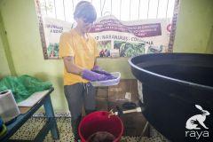 esterilizacion-puerto-narino-2019-144