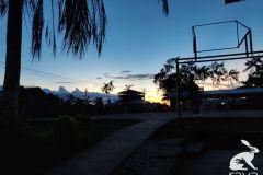 esterilizacion-puerto-narino-2019-17