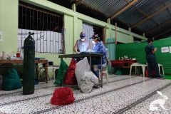 esterilizacion-puerto-narino-2019-18