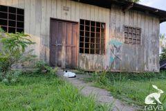 esterilizacion-puerto-narino-2019-27